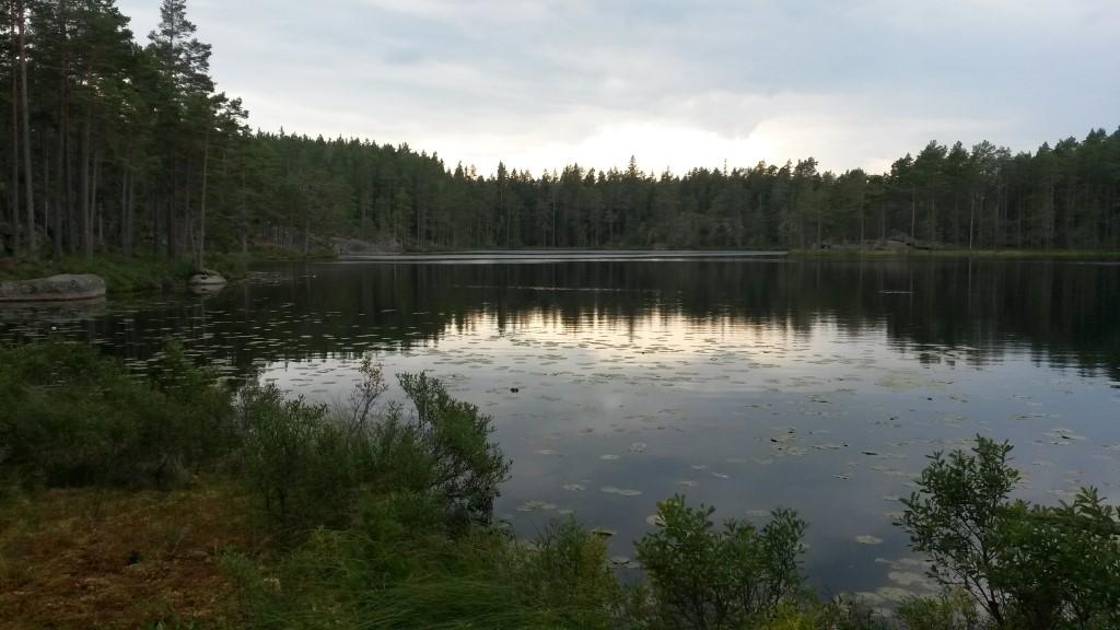 schweden2015_02