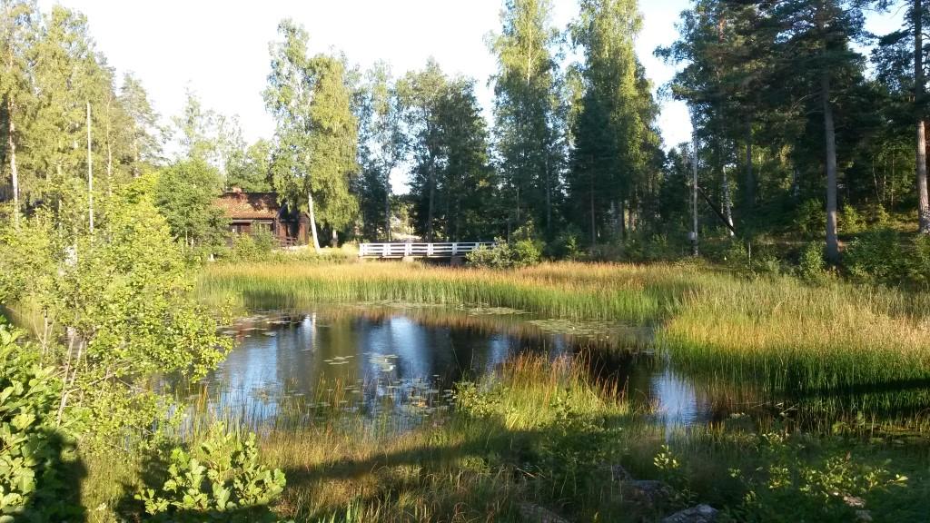 schweden2015_06